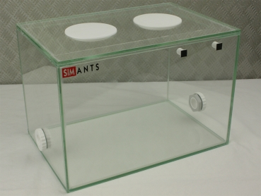Glass Basin 30x20x20 Ant Arena
